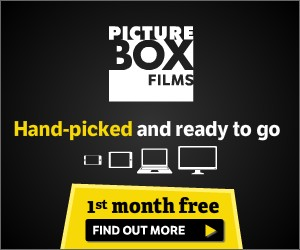 Picture Box - Hand-picked and ready to go - 1st month free