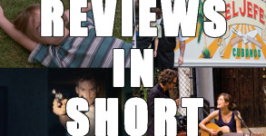 reviews-in-short-boyhood-chef-cold-in-july-begin-again-pudsey-the-dog-the-movie