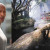 Dwayne Johnson to Lead Disney's 'Jungle Cruise'